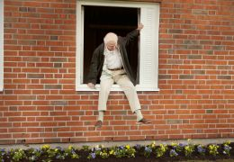 Der Hundertjährige, der aus dem Fenster stieg und...fsson