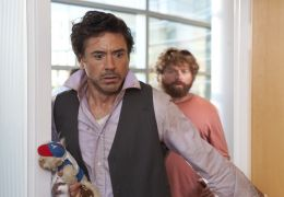 Stichtag - ROBERT DOWNEY JR. und ZACH GALIFIANAKIS