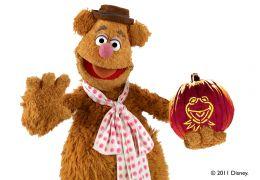 Die Muppets - Fozzie mit Kürbis
