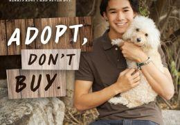 Booboo Stewart: 'Adoptieren statt Kaufen'