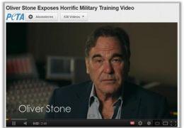 Oliver Stone wendet sich mit einem dringenden Appell...litär