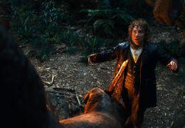 Der Hobbit: Eine unerwartete Reise - MARTIN FREEMAN...ggins
