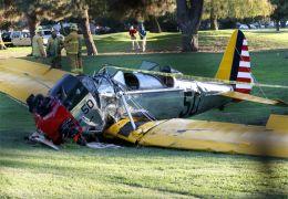 Das Wrack von Harrison Ford's Flugzeug