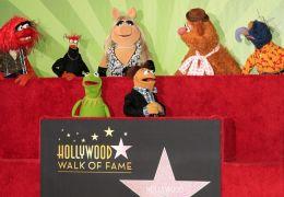 Die Muppets kehren zurück ins TV