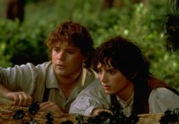 The Lord of the Rings: The Fellowship of the Ring mit...Wood