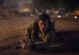 Dylan O'Brien in Maze Runner - Die Auserwählten in...wüste