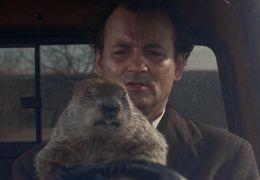 Und täglich grüßt das Murmeltier mit Bill Murray