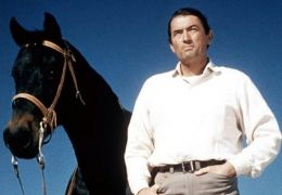 Gregory Peck in Weites Land