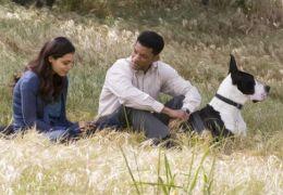Sieben Leben - Rosario Dawson und Will Smith