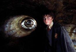 Harry Potter und die Kammer des Schreckens - Daniel...liffe