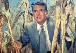 Der unsichtbare Dritte - Cary Grant