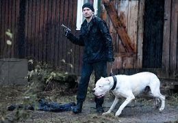 Headhunters - Clas Greve (Nikolaj Coster-Waldau)...Brown
